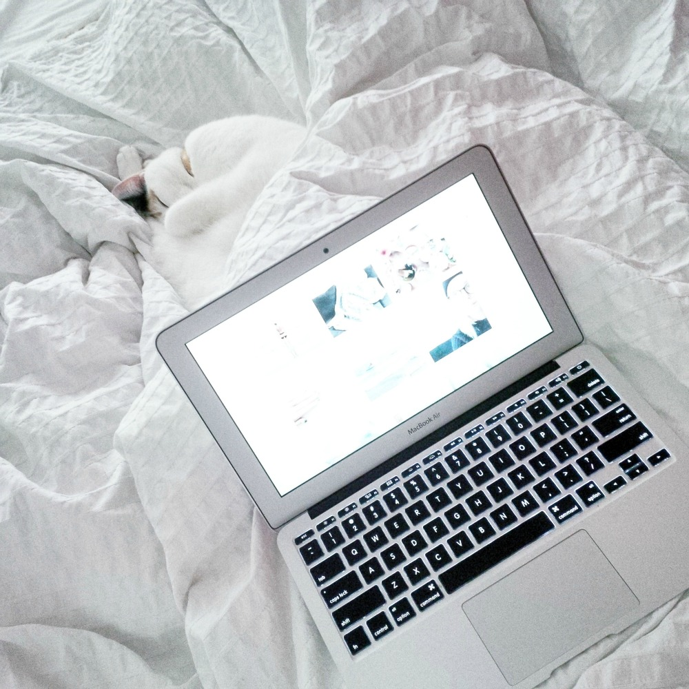 blogging in bed
